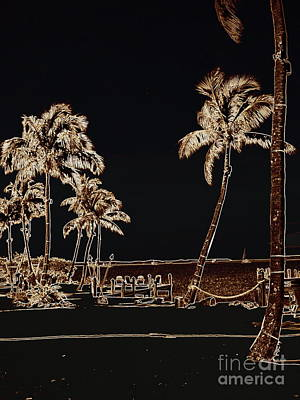Moonlit Palms Art Print by Rene Triay Photography