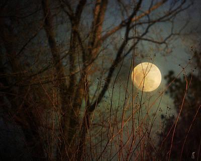 Moonlit Night Photograph - Moonrise by Jai Johnson
