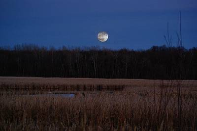 Art Print featuring the photograph Moonrise by Steven Clipperton