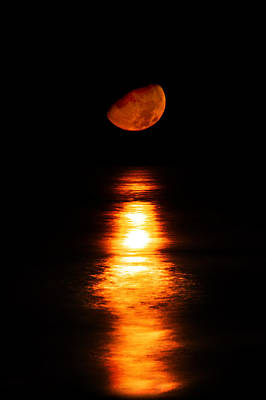 Photograph - Moonset Bradenton by Nicholas Evans