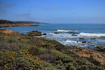 Photograph - Moonstone Beach by Heidi Smith