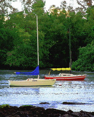 Digital Art - Moorings At Reed's Bay by Timothy Bulone