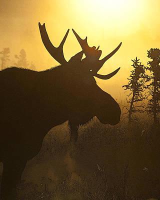 Sun Set Art Digital Art - Moose In Mist- Abstract by Tim Grams