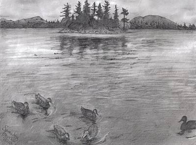 Duck Water Pencil Drawing - Moosehead Lake by Samantha Howell