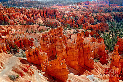 Photograph - More Bryce by Robert Bales