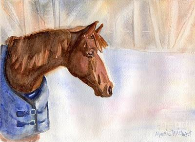 Morgan Horse Painting - Morgan by Maria's Watercolor