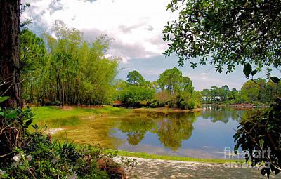 Photograph - Morikami Gardens by Nora Martinez