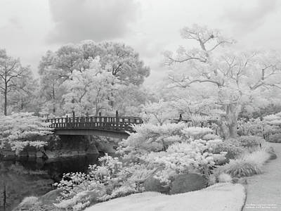 Photograph - Morikami Japanese Gardens by Rolf Bertram