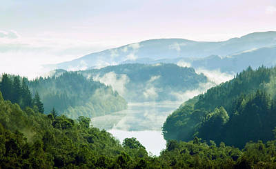 D300 Photograph - Morning Delight. Trossachs National Park. Scotland by Jenny Rainbow