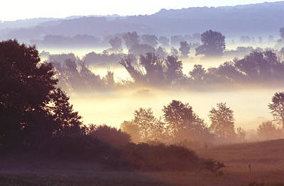 Photograph - Morning Fog by Bernard Lynch