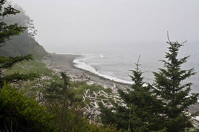 Whidbey Island Wa Photograph - Morning Fog by Tracie Skiles