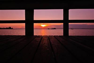 Photograph - Morning Glory by Laura DAddona