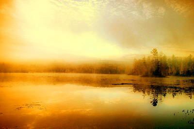 Photograph - Morning Gold by Emily Stauring