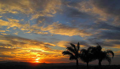 Laguna Beach Photograph - Morning Light by Linda Larson