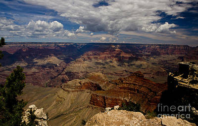 Photograph - Morning Over The Grand Canyon by Royce  Gideon