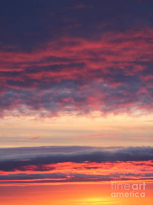 Photograph - Morning Sky Portrait by Donna Munro