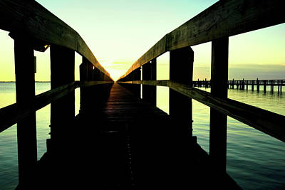 Photograph - Morning Sun by Laura DAddona