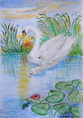 Lilly Pond Drawing - Morning Swim II  Edited Original Art by Debbie Portwood
