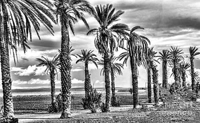 Morocco Landscape II Art Print by Chuck Kuhn