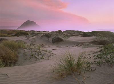 Photograph - Morro Rock At Morro Bay California by Tim Fitzharris