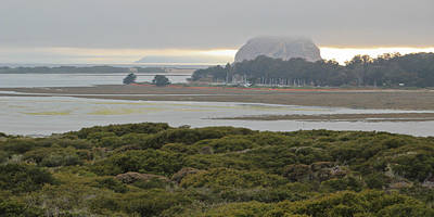 Photograph - Morro Rock From The Elfin Forest by Heidi Smith