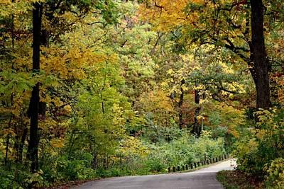 Autumn Photograph - Morton Arboretum Colors #2 by Rosanne Jordan