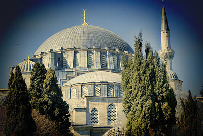 Mosque Magnificent Print by Joan Carroll