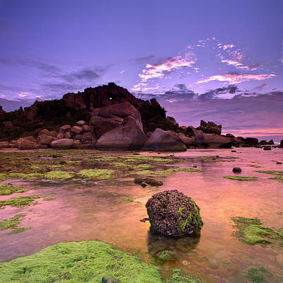 Y120831 Photograph - Moss Covered Rocks by AndreLuu
