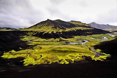 Moss In Iceland Art Print