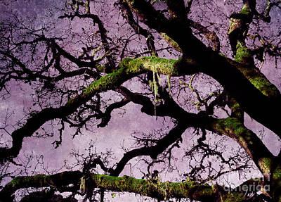 Spooky Digital Art - Moss On An Oak Tree Branch by Laura Iverson
