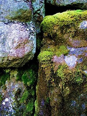 Photograph - Moss On Rocks by Bridget Johnson
