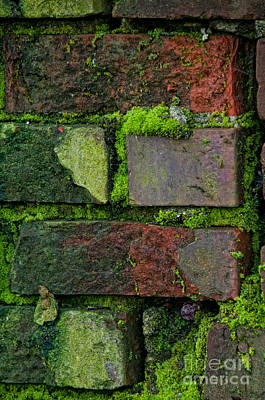 Art Print featuring the digital art Mossy Brick Wall by Carol Ailles
