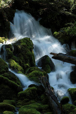 Mossy Cascades Art Print by Harry Snowden