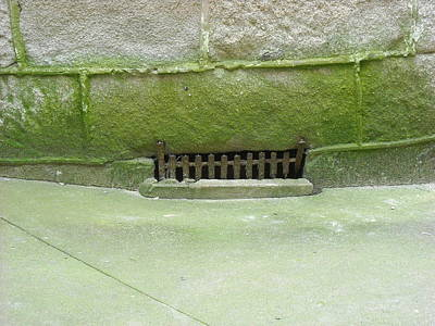 Art Print featuring the photograph Mossy Grate by Christophe Ennis
