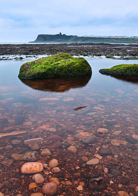 Mossy Rock Print by Svetlana Sewell