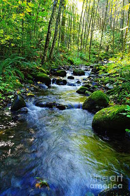 Mossy Rocks And Water   Art Print by Jeff Swan