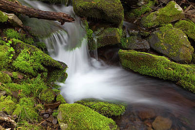 Photograph - Mossy Spring Spillway Waterfall Grotto by John Stephens