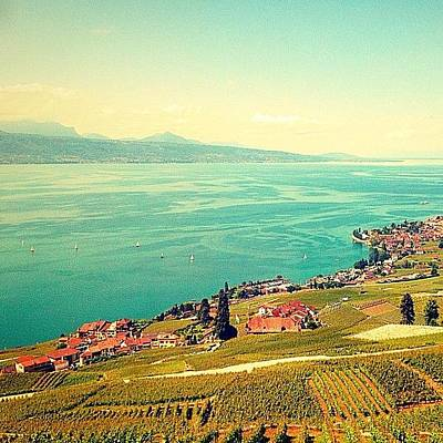Vineyard Wall Art - Photograph - Most #beautiful #lake Ever! by Christoph Flueckiger