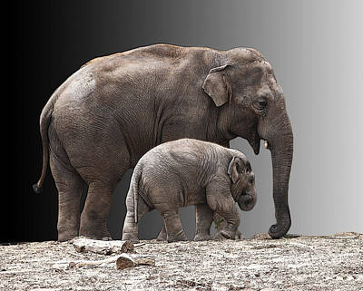 Mother And Baby Art Print by Sheila Laurens