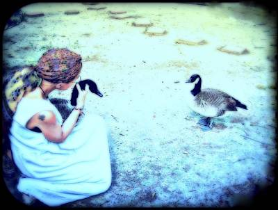 Mother And Geese Art Print