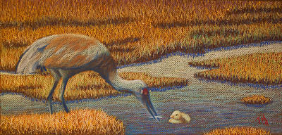 Painting - Mother Sandhill Crane by Thomas Maynard