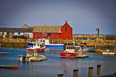Motif 1 Art Print by Erica McLellan