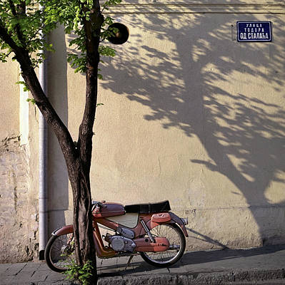 Photograph - Motorcycle And Tree. Belgrade. Serbia by Juan Carlos Ferro Duque