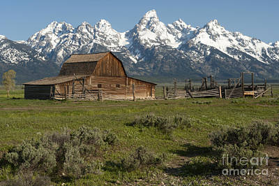 Photograph - Moulton Barn - Grand Tetons by Sandra Bronstein