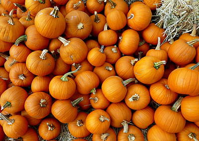 Photograph - Mound Of Many Pumpkins by Jeff Lowe