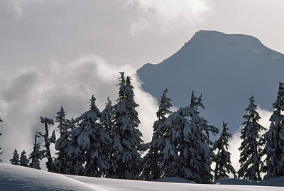 Cascade Mountains Snoqualmie National Forest Photograph - Mount Baker, An Old Volcano, Dominates by Gordon Wiltsie