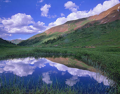 Mount Baldy Photograph - Mount Baldy And Elk Mountains Colorado by Tim Fitzharris