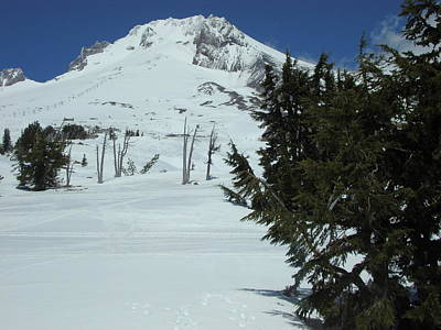 Photograph - Mount Hood Oregon Ski Trail by Glenna McRae