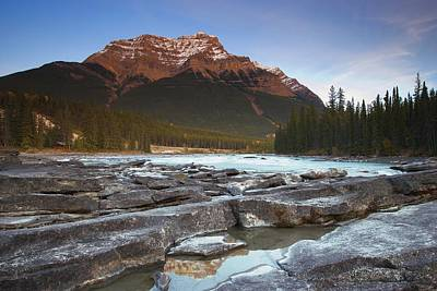 Too Cute For Words - Mount Kerkeslin Athabasca Falls Jasper by Carson Ganci