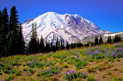 Photograph - Mount Rainier V by David Patterson